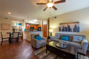 One Bedroom Apartments for Rent in Katy, TX - Living & Dining Rooms and Kitchen (2)
